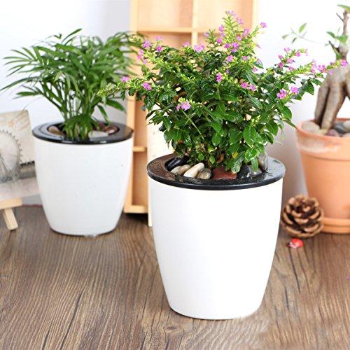 Mkono 3 Pack Self Watering Planter White Flower Pot, L
