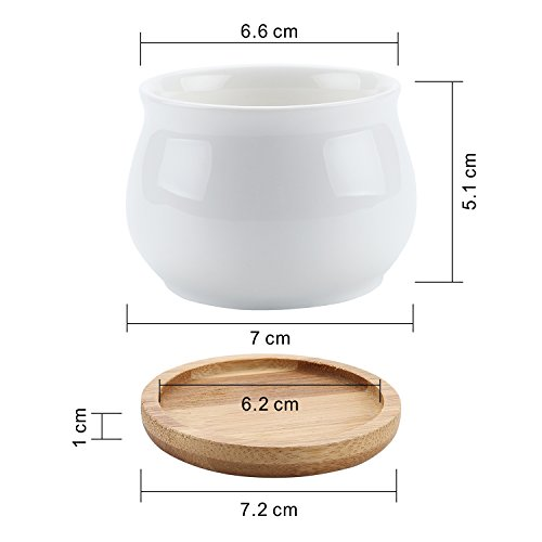 T4U 2.75 Inch Ceramic White Jar Shape Design succulent Plant Pot/Cactus Plant Pot Flower Pot with bamboo tray/Container/Planter White