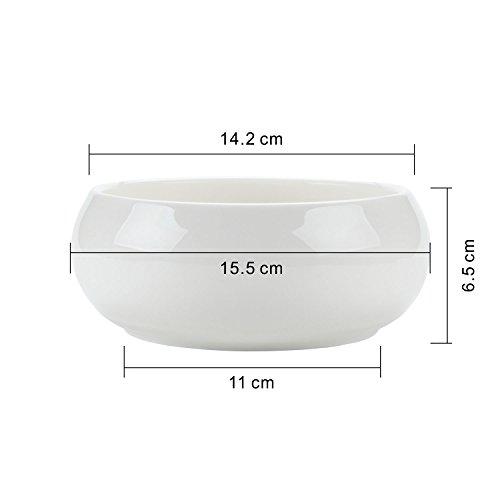 T4U 6.5 Inch Ceramic White Round Simple Design succulent Plant Pot/Cactus Plant Pot Flower Pot/Container/Planter