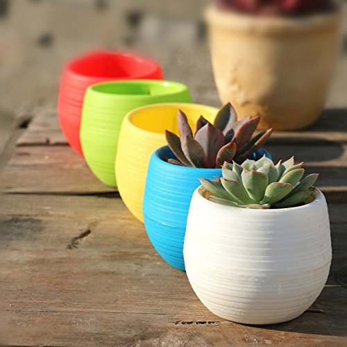 Wish you have a nice day 4.5″ Round Plastic Plant Flower Pots Home Office Decor Planter 5 Colors (5, 4inch)